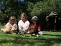 Farmyard animals at Pukenui Holiday Park