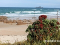 Golden sands of Henderson Bay. 15 mins from Pukenui Holiday Park