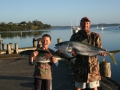 Kingfish caught at Pukenui Wahrf, a short walk from Pukenui Holiday Park