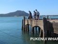 fishing at Pukenui Wahrf, a short walk from Pukenui Holiday Park