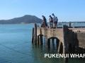 Pukenui Wharf (3)