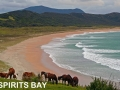 Spirits Bay 2A