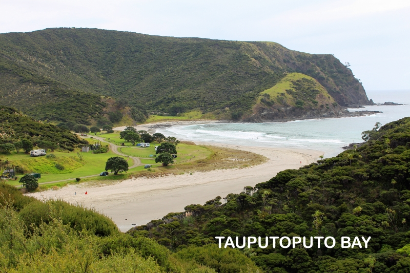 Pukenui Holiday Park Far North New Zealand Stay In Our