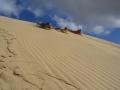 te paki sand dunes 6