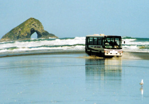 beach-bus-tour