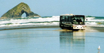Harisons Cape Runner Tours can be booked from the Pukenui Holiday Park